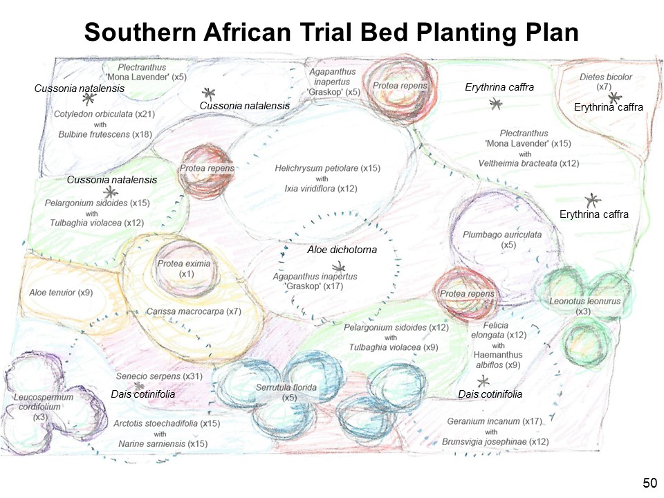Southen African Trial Bed Plan
